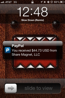 Share Magnet Payment $44.73